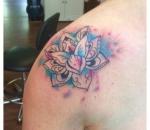 953_lotus-coloursplash